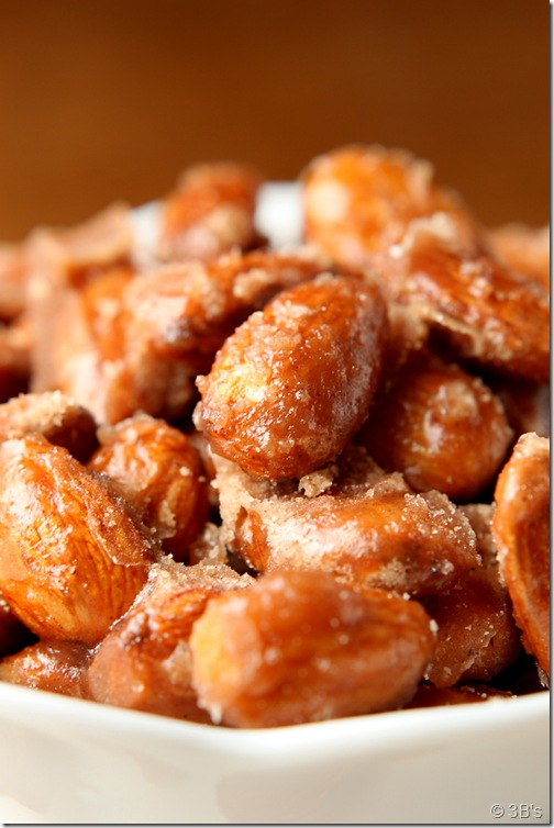 candied-almonds-CU
