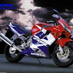 Honda_CBR_Red[1].jpg