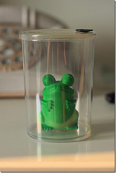 青蛙變王子-2