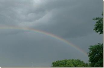 Rainbow 7.10 002