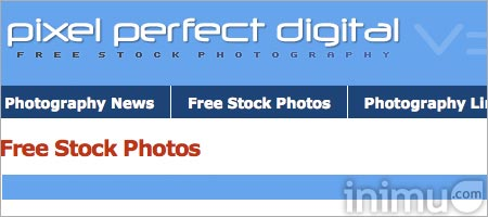 06-pixelperfectdigital.jpg
