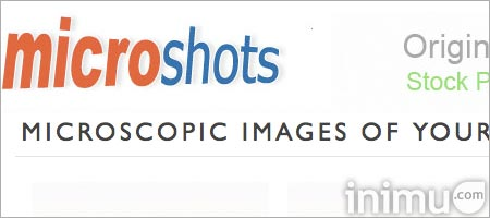 14-microshots.jpg