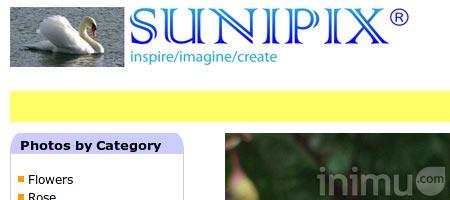 21-sunipix.jpg