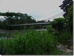 6 Year Bridge