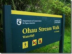 Ohau Walk