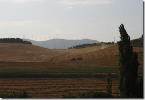 Spain 024