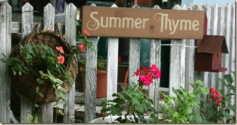 SummerThyme3_2009