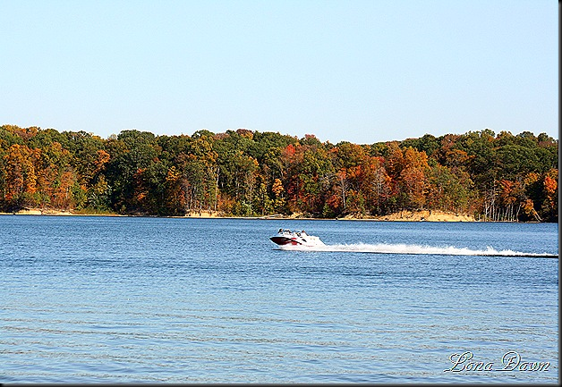 CC_Boat