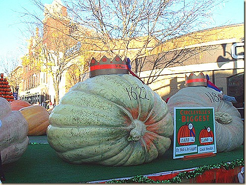 Biggest_Pumpkin_1622