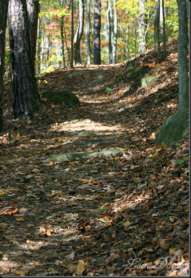 Furnace_Trail2
