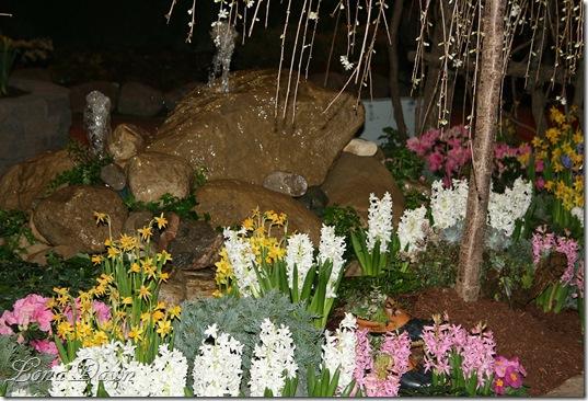 HGS_Fountain_Hyacinths