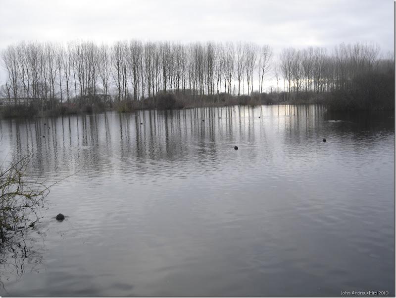 2010-02-07 006