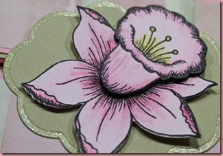 20110223_PinkDaffodils_Details