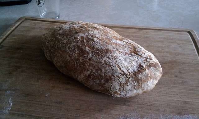 no-knead-ciabatta-20101119.jpg