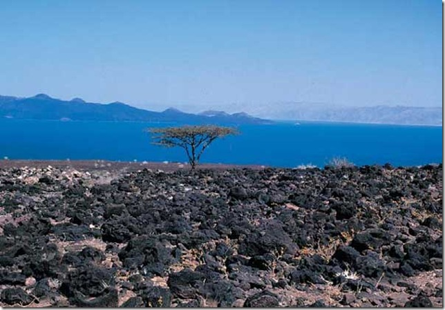 lake turkana6