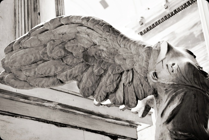 museum angel wing bw