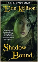 shadowBoundCover_med