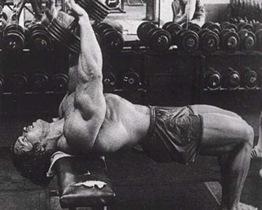 Arnold_Schwarzenegger_pullover