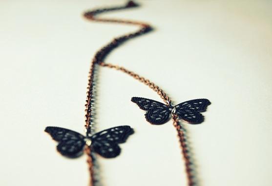 butterfly field 2