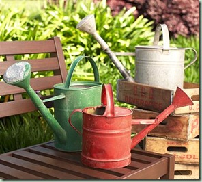 watering cans pb