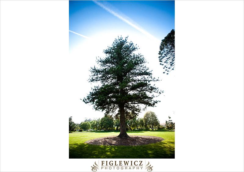 FiglewiczPhotography-CamarilloRanch-014.jpg