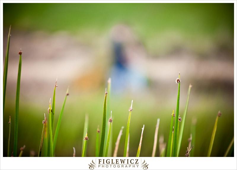 FiglewiczPhotography-TerraneaResortEngagement-006.jpg