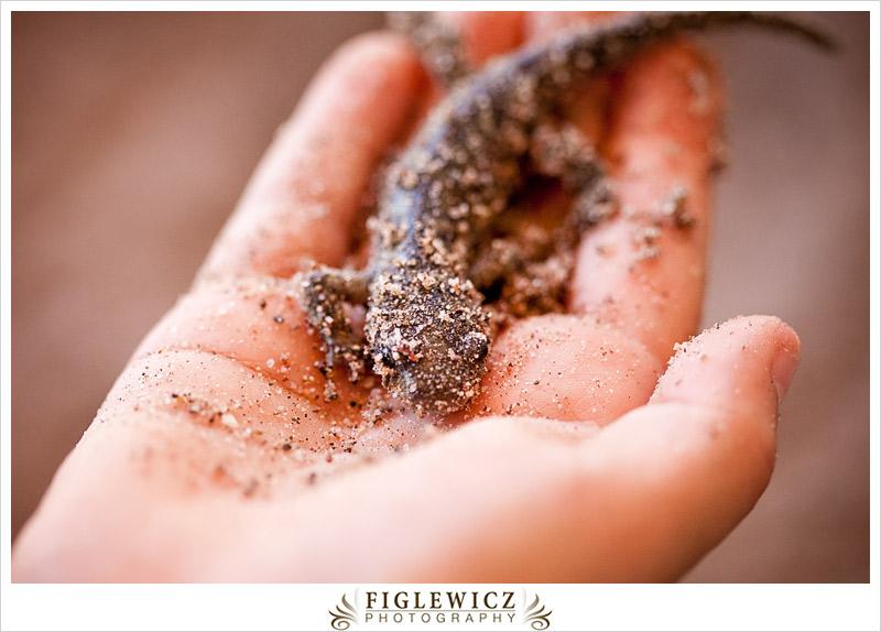 FiglewiczPhotography-AZ-0020.jpg
