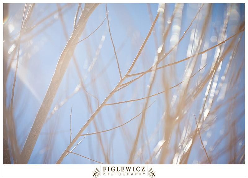 FiglewiczPhotography-Arizona-0023.jpg