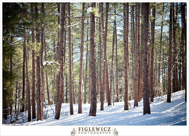 FiglewiczPhotography-Arizona-0051.jpg