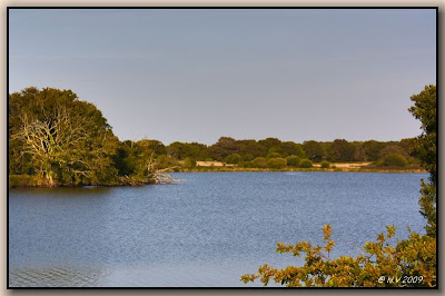 étang coté Noyalo