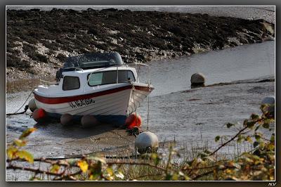 basse mer sur le chenal de noyalo