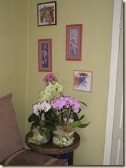 орхидейная поляна