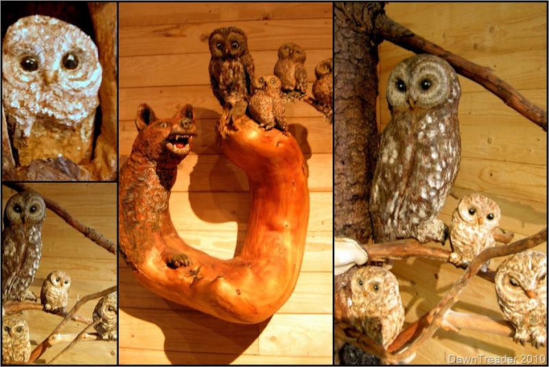 2010 07 153 Uno's Owls