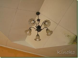 My House032