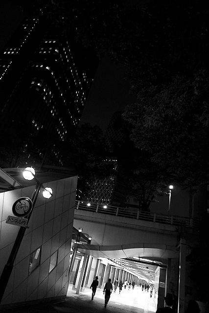 Shinjuku Mad - Birds fly faster than time 25