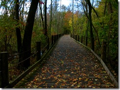 Mt. Vernon trail 2