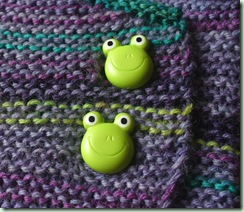 Frog button detail