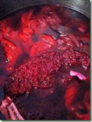 Cochineal Bath