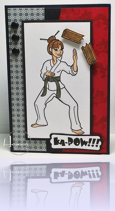 HSC96-Karate-wm