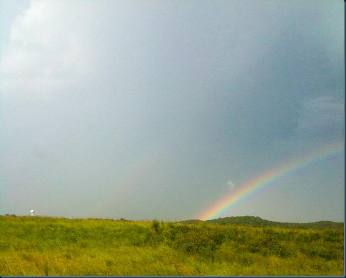 Rainbow (3 of 4)