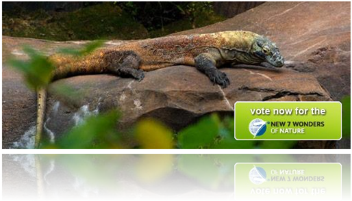 vote-komodo-for-new7-wonders-of-nature
