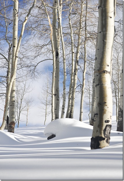 snow_patrick2_web