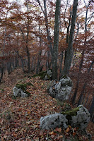 cierna_hora-holica-06.jpg Photo