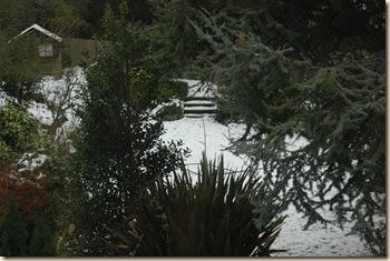 snow 042