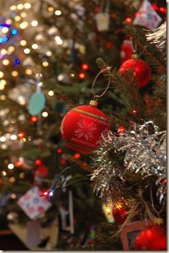 Christmas trees 012