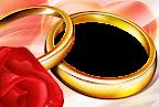 alianças e rosa vermelha