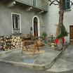 presepe_vivente_piazza_s_stefano (15).JPG