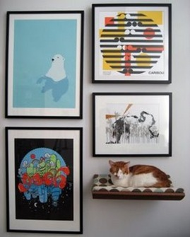 cat_medium_wall_full