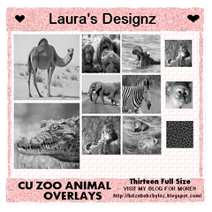 LD_CU_ZOO ANIMAL OVERLAYS PREVIEW