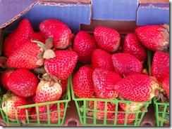 Strawberry Festival (4)